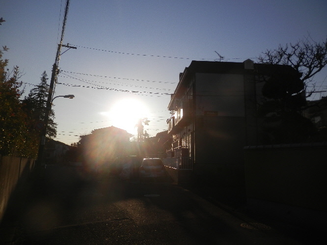 P1310046(1).JPG
